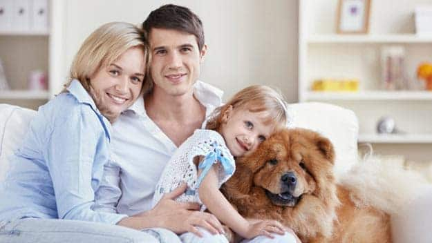 Wills & Trusts dog-young-family Direct Wills South Woodford